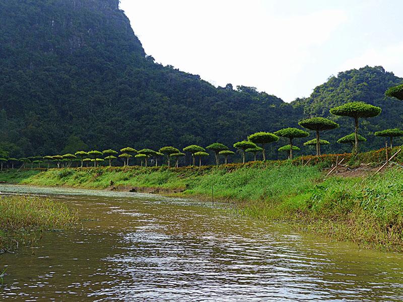 Los espectaculares paisajes de Tam Coc