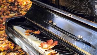 3 momentos mágicos y reflexiones que viví tocando el piano mientras viajaba